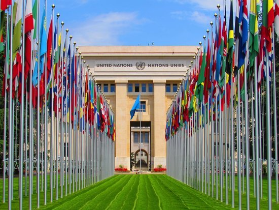 un-chair-calls-for-introduction-of-sex-education-in-schools