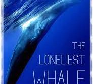 the-loneliest-whale:-the-search-for-52-(2021)-subtitles
